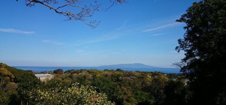 伊豆旅行に行きました。