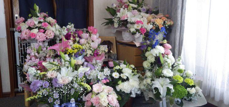 お花でいっぱい。